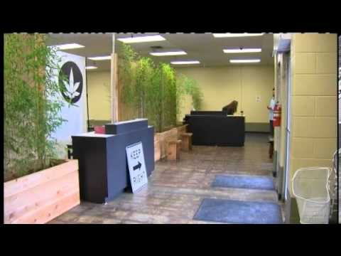 seattle's-largest-medical-pot-dispensary-opens-|-largest-pot-store-opens-in-seattle