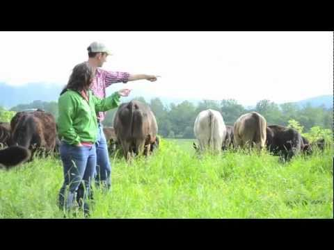 A Day in the Life: On a Small Meat Farm.m4v
