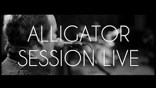 Axel Bauer - Alligator | Live Session Studio Ferber | #6