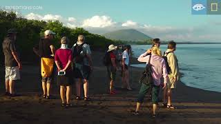 Shark Breakfast | Galápagos | Lindblad Expeditions-National Geographic