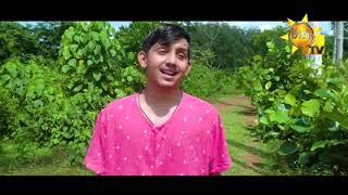 මන්දිරේ සීත කාමරේ | Mandire Seetha Kamare | Sihina Genena Kumariye Song Thumbnail