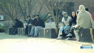 IM Sciences Peshawar