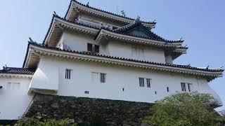 일본 신협 효도 여행