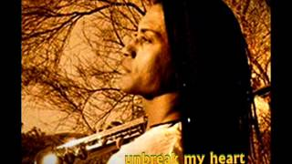 Marion Meadows  -  Unbreak My Heart