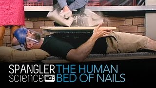 Human Bed of Nails - Cool Science Experiment