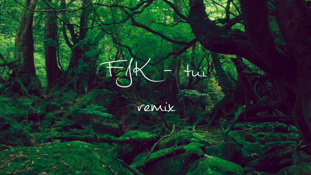 Fkj Tui Remix Youtube