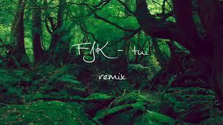 FKJ - tui remix