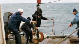 видео Устойчивость морей