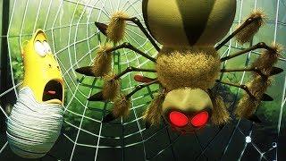 LARVA - SPIDER | Cartoon Movie | Videos For Kids | Larva Cartoon | LARVA Official