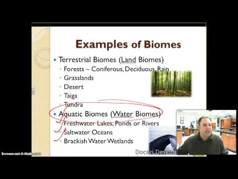 Ecology and Biodiversity Notes Video: Part 1