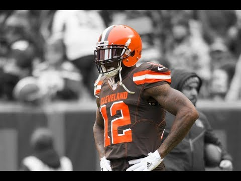 Josh Gordon ll Both ll Highlights ᴴᴰ