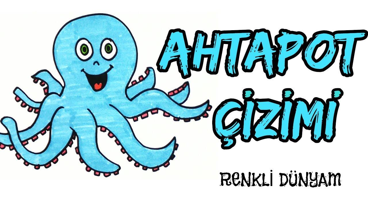Ahtapot Nasıl çizilir Ahtapot çizimi How To Draw An Octopus