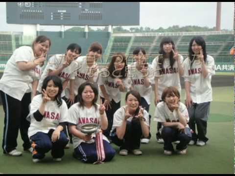 選手紹介 | 共栄大学硬式野球部