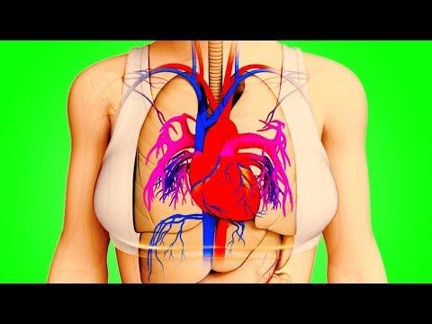 Тело Предупредит Вас За Месяц До Инфаркта - Видео с YouTube на компьютер, мобильный, android, ios