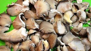 Как вкусно замариновать гриб - вешенку.(Вешанка очень вкусный и мясистый гриб.Мариновать его и употреблять в еду - одно удовольствие! #рецепт #закуска., 2014-11-24T20:01:09.000Z)