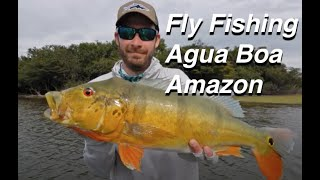 Agua Boa Fly Fishing Trip - International Angler 2018