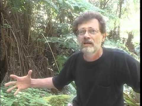 Terence McKenna - Interview Hawaii - October 1998