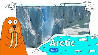 Arctic:
