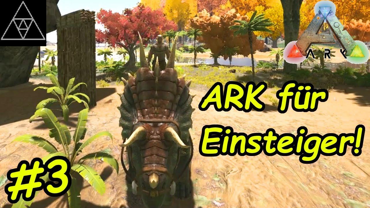 Ark Anfänger