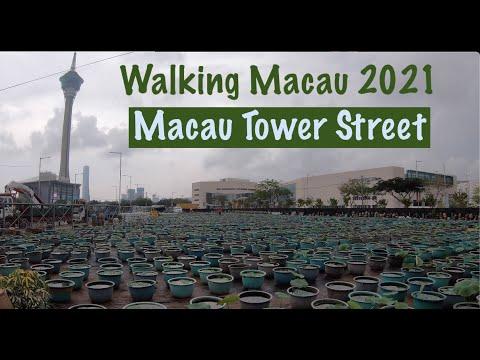 [4K] Walking Macau 2021: Street of Macau Tower - Rua da Torre de Macau  -觀光塔街 - 中國澳門