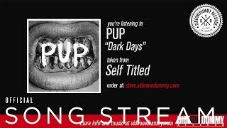 "PUP - ""Dark Days"""