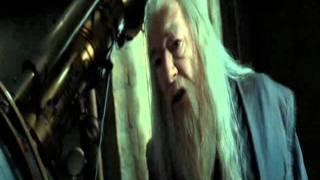 Recuerdos de Snape - Harry Potter y las Reliquias de la Muerte Parte 2