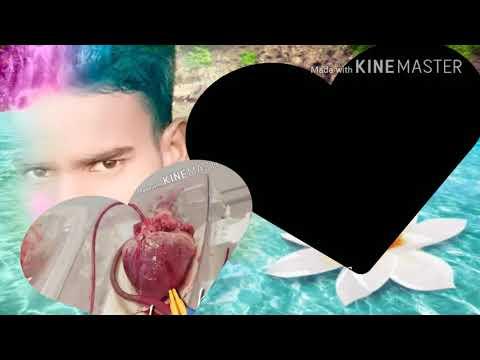 Love song mukesh mr