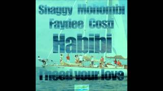 HABIBI (I need Your love) - SHAGGY MOHOMBI FAYDEE COSTI (Dj Leo Remix)