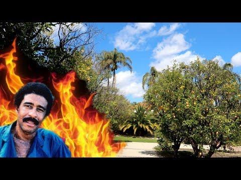 #965 Where RICHARD PRYOR Set Himself On Fire - Jordan The Lion Daily Travel Vlog (3/29/19)