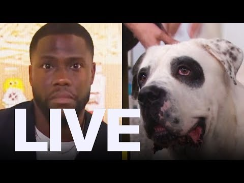 Kevin Hart Freaked Out By Dog  ET Canada