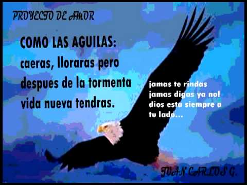 Como Las Aguilas Proyecto De Amor Comalapa Reggaeton