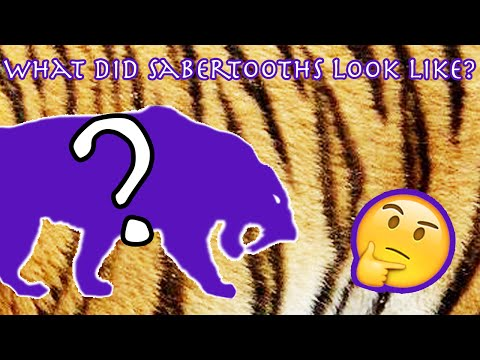 What Did Sabertooth Cats Look Like? | Artist Resources