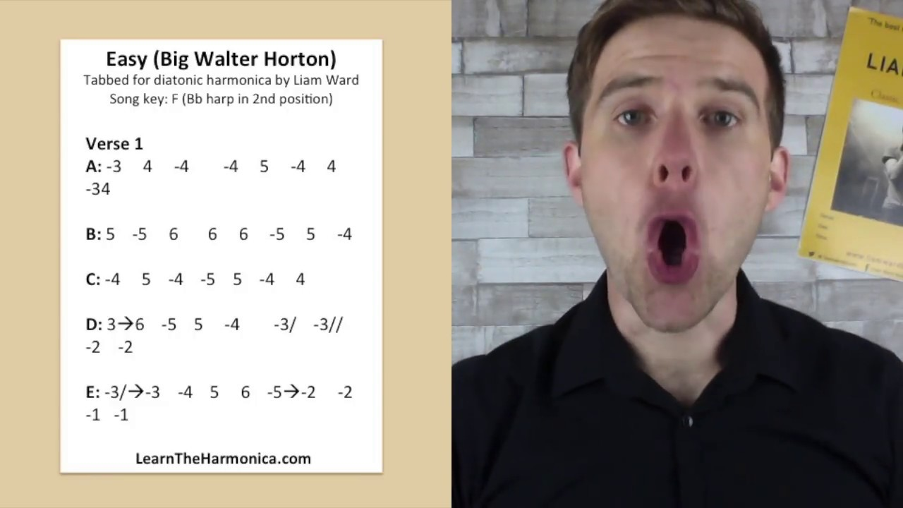 Harmonica Lessons Pdf