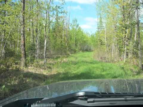 3799 Evans Road South Maple, WI  Douglas County 70 AC Northern Hunting Land