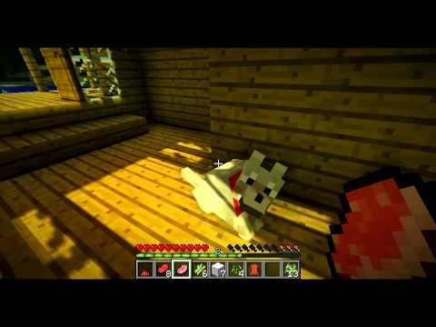 ChrisCraft - Episode 3: Progressin'