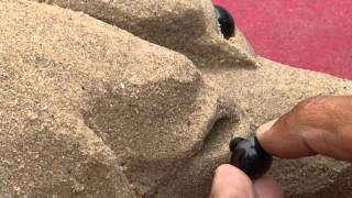 Victor Linguraru -  Creates a dog in sand -  Creează un câine în nisip - Sandlistaverk