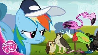 Мультики Дружба - это чудо про Пони - Пусть лучший победит!