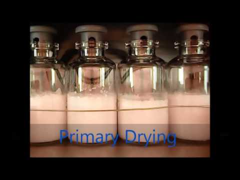 Time Lapse Freeze Drying