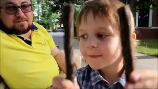 видео Особняк Фолленвейдера