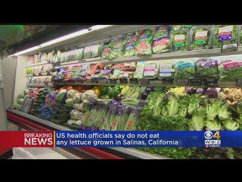 Health Officials Say Do Not Eat Lettuce From Salinas, California thumbnail