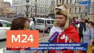 Смотреть видео Санкт-Петербург стал центром притяжения болельщиков перед матчем Россия – Египет - Москва 24 онлайн