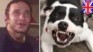 英ロンドン北部で3月下旬、41歳の男性が飼い犬のスタッフォードシャー・...