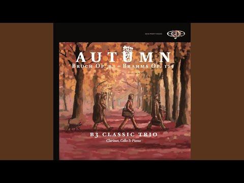 8 Pieces, Op. 83: No. 1 In A Minor: Andante