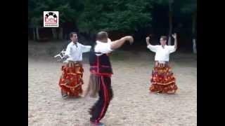 Yöresel Oyun Havası - Yöresel Şenlikler -Azdavaylı Şen Kardeşler - Yöresel Oyun Havası- Yöresel Şenlikler -Azdavaylı Şen Kardeşler ( bey plak )