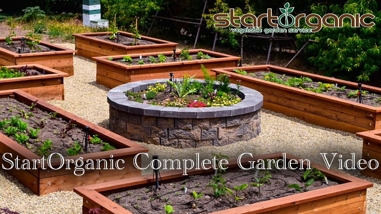 startorganic complete vegetable garden setup guide - youtube