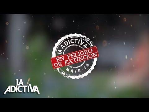 La Adictiva - En Peligro De Extinción [Lyric Video]