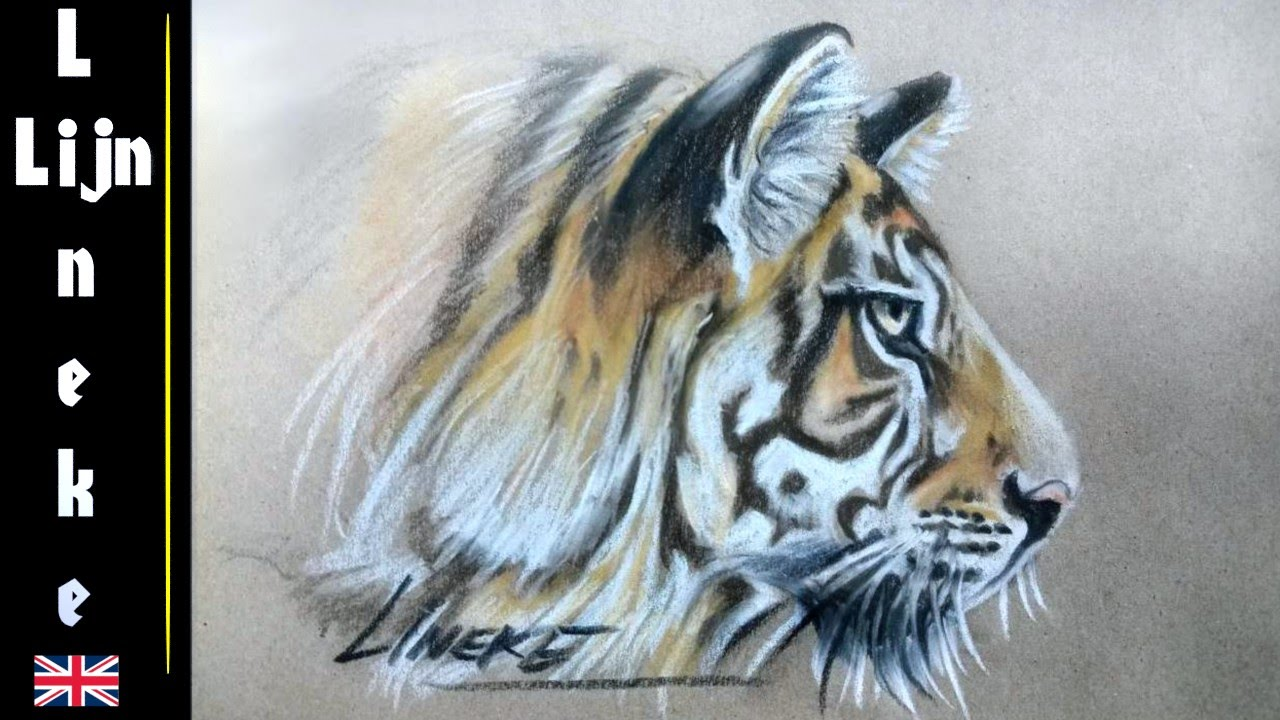 How To Draw A Tiger Pastel Pencils Easy Tutorial For