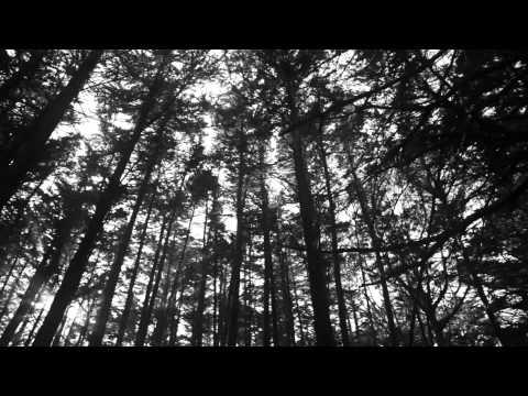 Ben Watt / 'Spring' (a short film by David Vespremi)