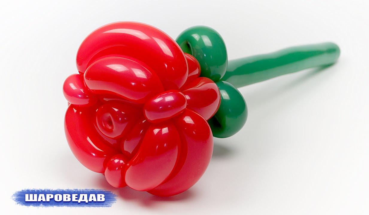 Видео как сделать розу из шаров