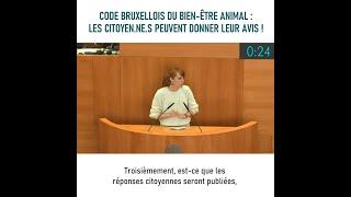 Code bruxellois du Bien-être animal : les citoyen.ne.s peuvent donner leur avis ! - 25 juin 2021